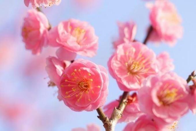 PicsArt_04-02-11.53.38.jpg
