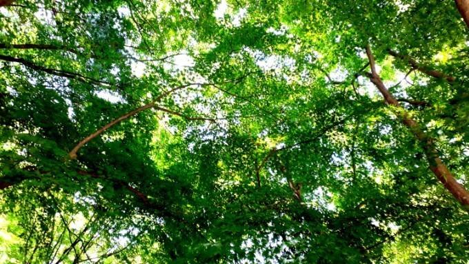 PicsArt_05-11-01.48.57.jpg