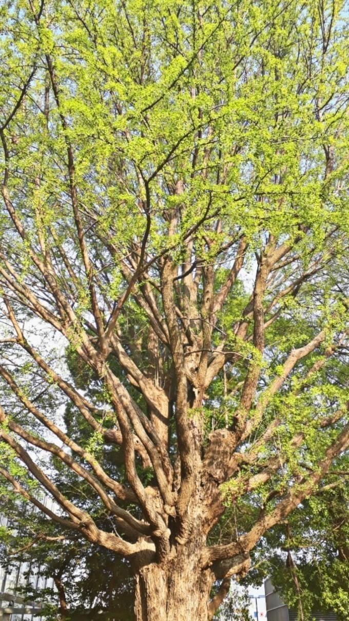 PicsArt_05-11-01.52.34.jpg
